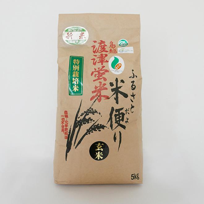 鳥越渡津蛍米(玄米)